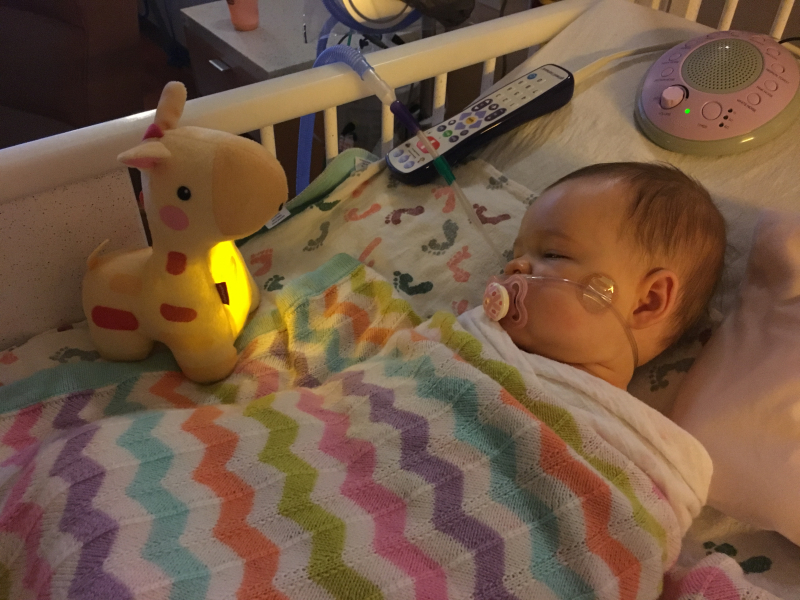 Daisy in the Hospital Thanksgiving 2017
